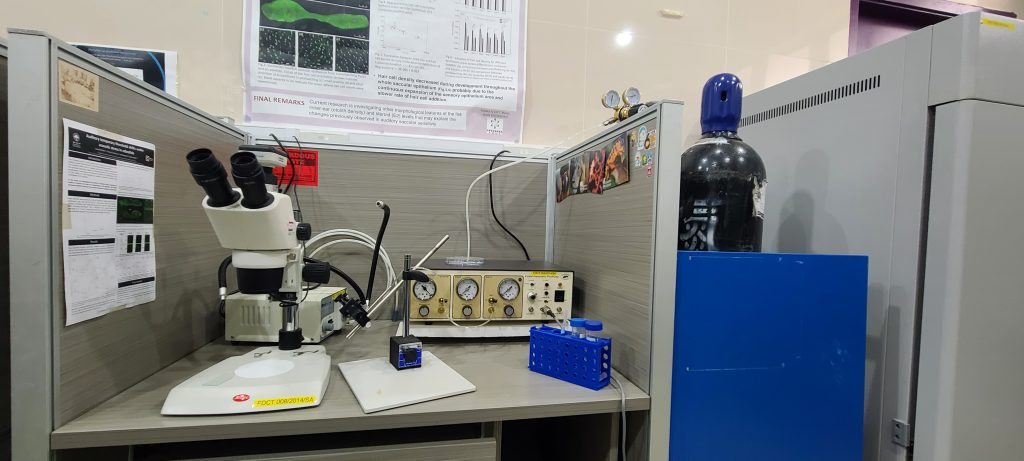 Pneumatic Microinjector with Vacuum Pressure System